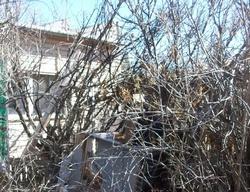 Cochise Row