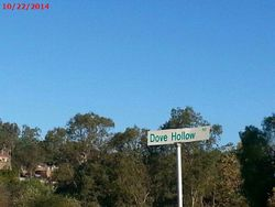 Dove Hollow Rd