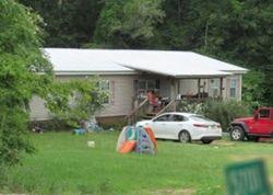 Skipperville Foreclosure
