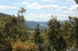 Stewart Canyon Rd